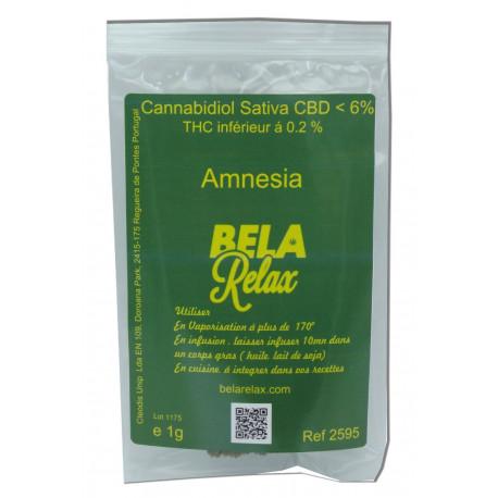 Amnesia la fleur CBD euphorique cultivée en Indoor